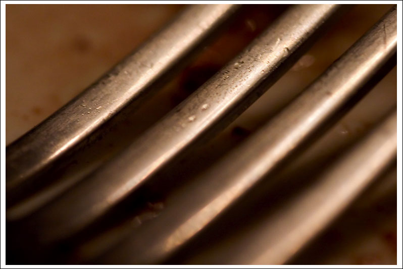 fork-close-up08.jpg