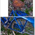 Blue bike diptych