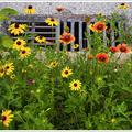 Flowers and sewer